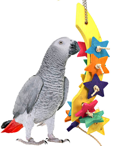 The 3435 Moon Chew from Bonka Bird Toys is a delightful chewing bird toy for your medium to large sized beaked buddy. Almost every part on the Moon Chew is chewable!