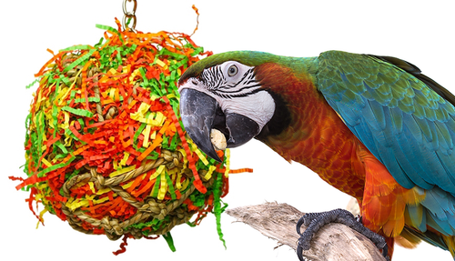 1891 Large Calypso super shredder ball is just stuffed full of excitement, your large feathered friend will just love to attack this jute net ball which is stuffed full of colorful shredded paper and food colored dyed wooden beads, spools, blocks, buttons and much more.