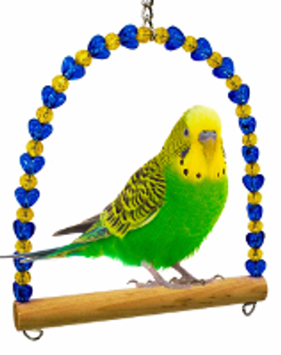 What is the best bird toy?