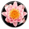 Crystal Lotus Paperweight