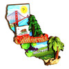 3D California Magnet