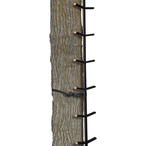 Muddy Ascender Climbing System Deer and Deer Hunting