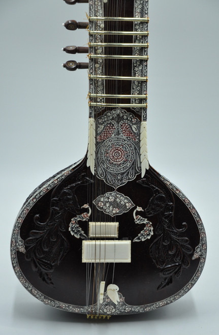 Travel Concert Sitar by Mohammed Waseem