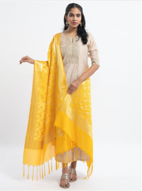 Woven Banarasi Silk Shawl (Beautiful)