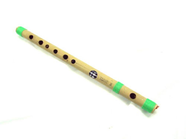Bansuri Side D Tune