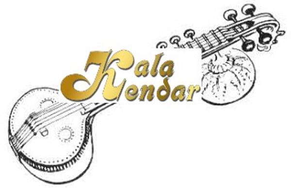 Veena Saraswati Strings