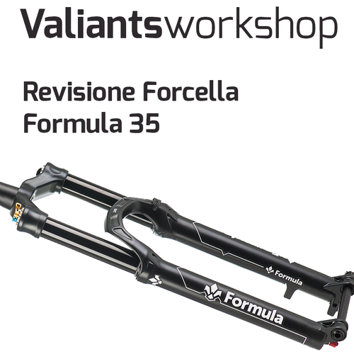 Revisione Forcella Formula 35 Thirty-Five