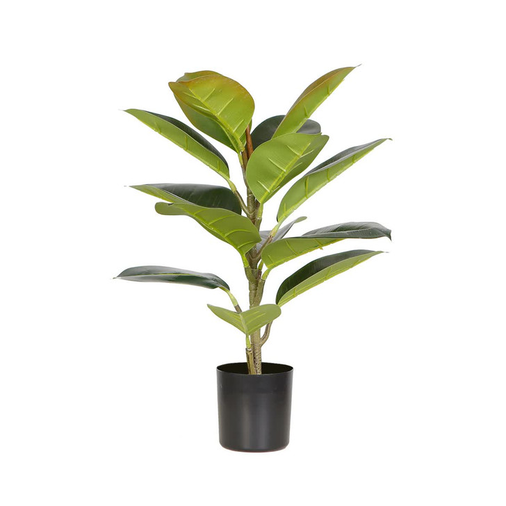 50cm Potted Artificial Oak Plant