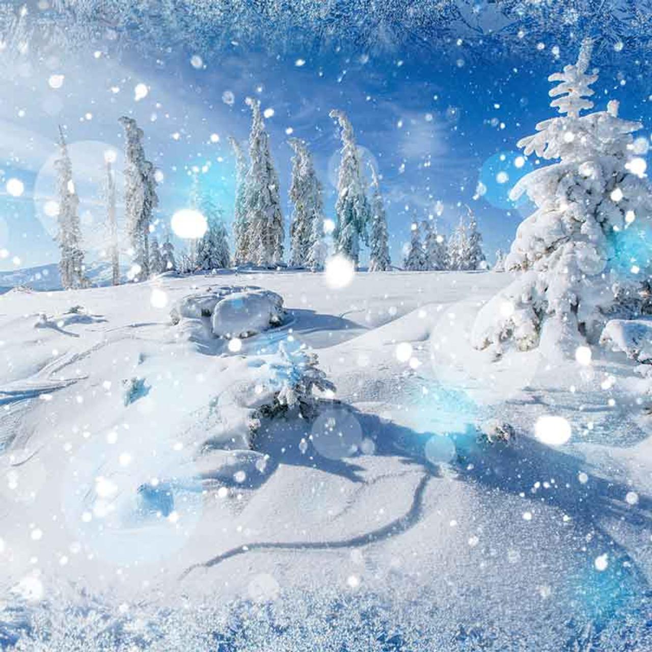 Frozen Bokeh