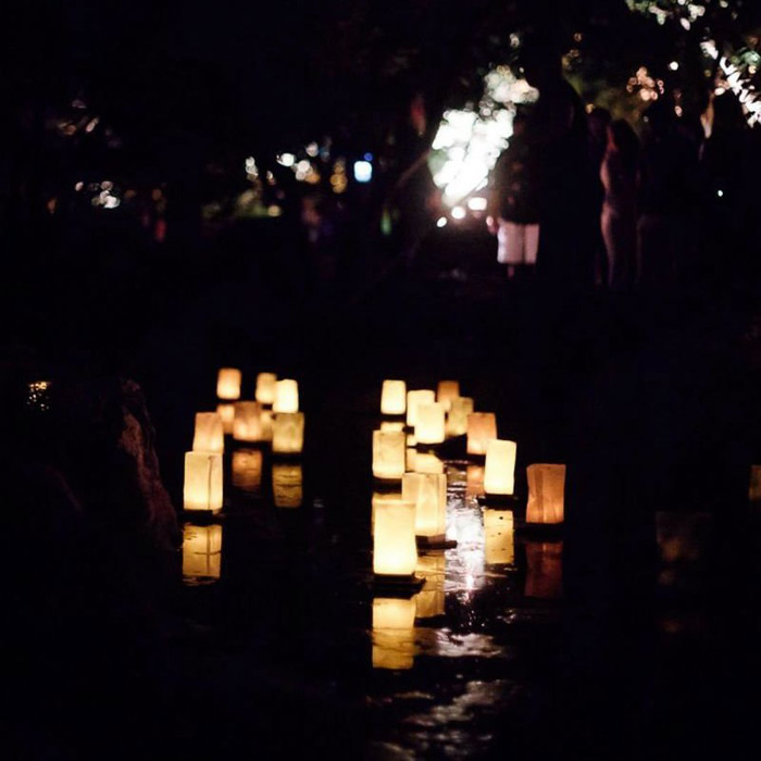 Floating Lanterns - Pack of Six