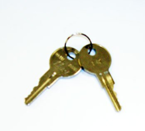 Two gold True 831365 keys on a ring