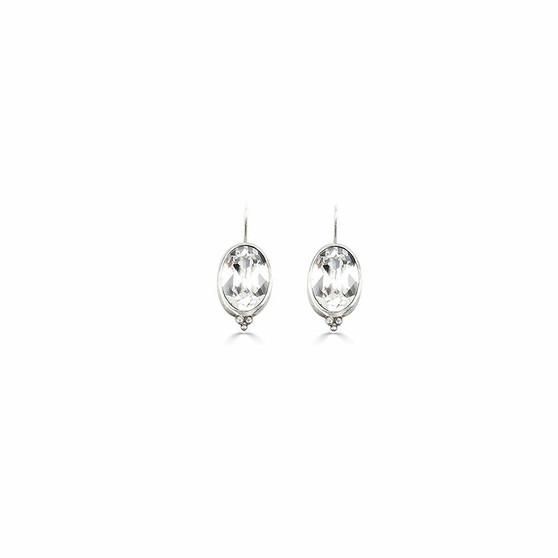 Charmed Crystal Drop Earrings