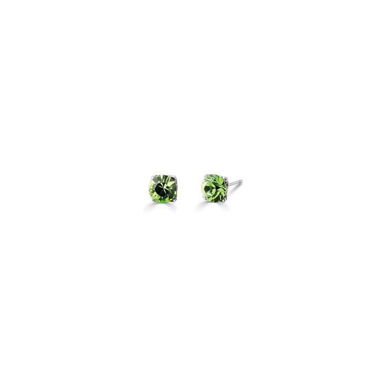 Go Wild Stud Earrings (E3296)