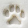Acrylic Stamp (KS) - Paw Print - 10mm