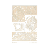 RMR Laser Texture Paper - Portabella Mushroom - 127 x 178mm
