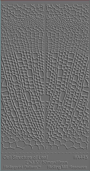 RMR Laser Texture Paper - Cell Structure Of Leaf - 50 x 89mm