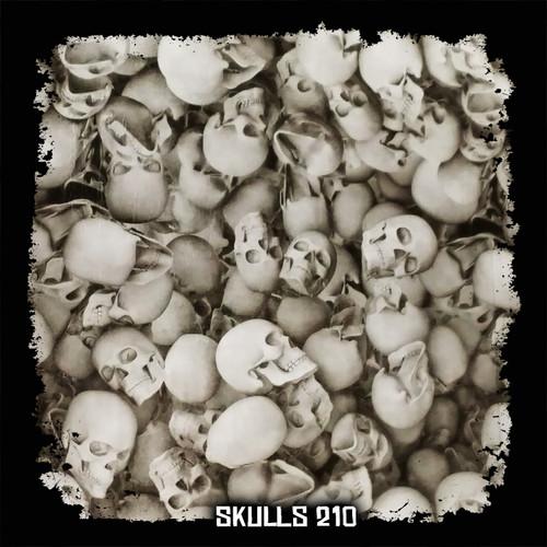 Skulls 210