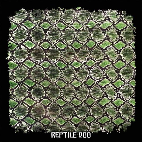 Reptile 200