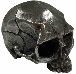 Stainless Steel Skull Cane Handle