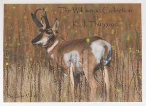 Big Game Pattern Book, The Wildwood Collection