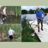 Aquatic Vegetation Groomer (AVG) | Gas Powered Cattail Cutter