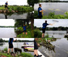 Rake Zilla - Large Lake weed beach rake with big teeth