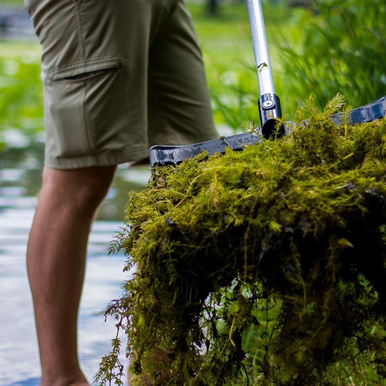 Lake Weed Pitch Fork