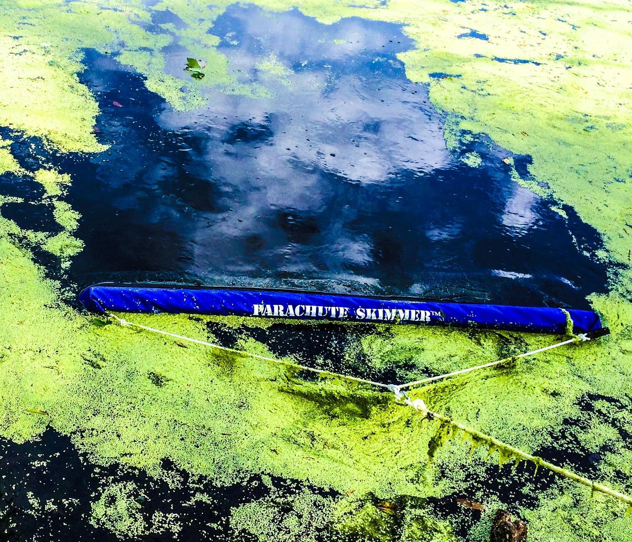 The Parachute Skimmer Algae Duck weed Pond Skimmer Duckweed removal, Lake