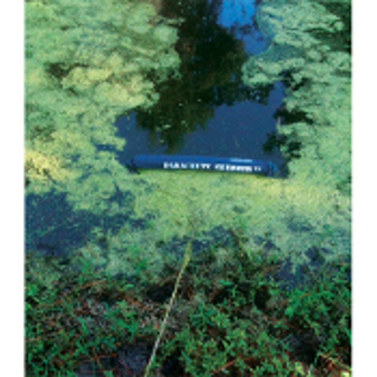 Lake and Pond Skimmer for cleaning Algae, Duckweed & any floating debris