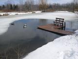 Best Dock De Icer For Your Money