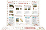 This is an example of the a California Missions display board that can be made using the template and clip art in the printable kit.