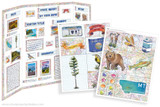 Kit has everything you need to make your Montana state report poster. Including a map, state flower, moto, nickname, tree and more!