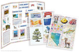 Kit has everything you need to make your Nevada state report poster. Including a map, state flower, moto, nickname, tree and more!