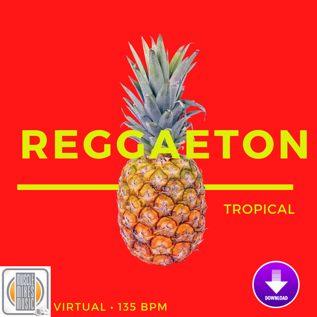 Reggaeton Tropical - 135 BPM (Virtual Fitness)
