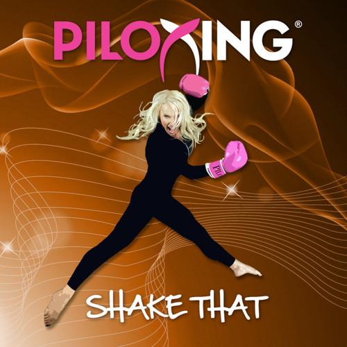 PILOXING, vol. 10 -  Shake That-CD