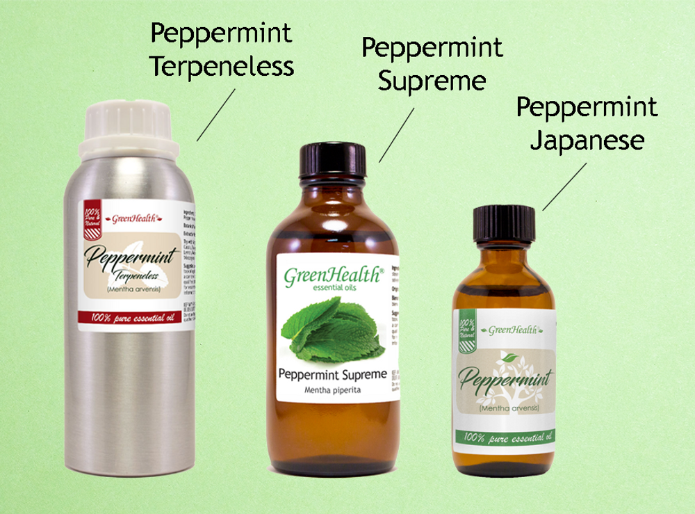 3 Different Types of Peppermint Essential Oil You Need to Try!