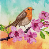 Image of Craft Buddy Robin crystal art card kit design