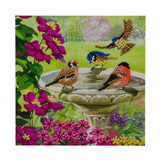 Image of completed Craft Buddy Garden Birds Crystal Art card