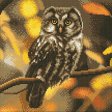 Image of completed Craft Buddy Tawny Owl crystal art kit design