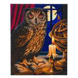 Image of Craft Buddy Lisa Parker Licensed Astrologer Owl crystal art kit design
