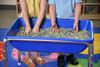 Multi-Colored Kidfetti® Play Pellets 2