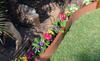 Flower Bed Border