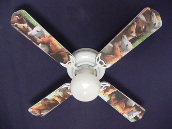 Shown on fan
