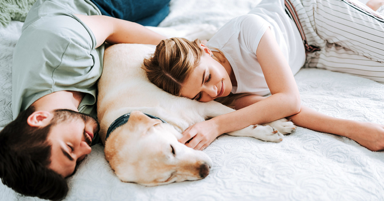 Sleep and How It Affects Our Immunity