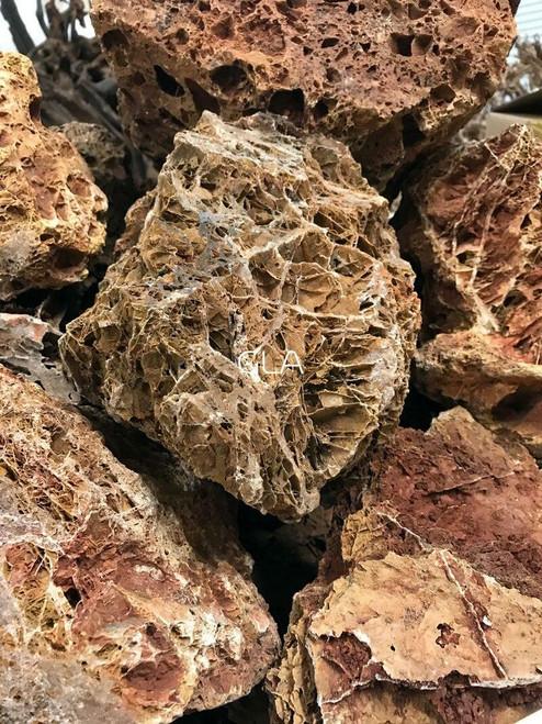 Maple Leaf Rock - $5/lb