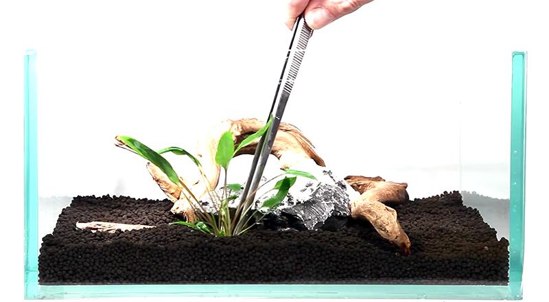 tropica-soil.jpg