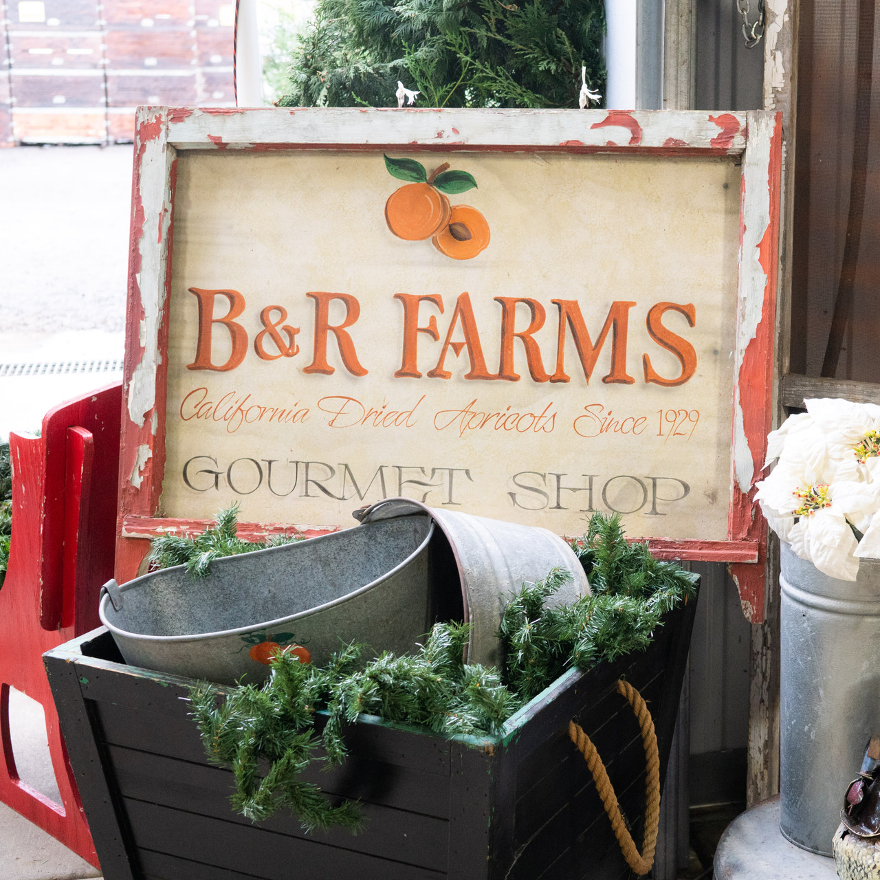 B & R Farms Hosts Holidays on the Farm