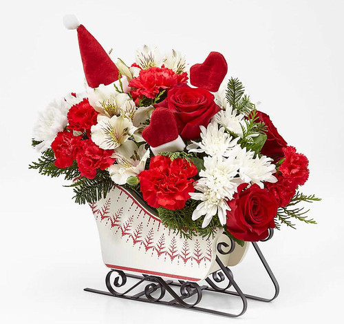 Ride into the season with a joyful burst of holiday blooms! A modern, fresh take on the traditional sleigh arrangement, we bring together red roses, red carnations, and red mini carnations, offset by snowy white Peruvian lilies and chrysanthemums, accented with an assortment of Christmas greens. Presented in a white holiday sleigh.  Send holiday cheer in the form of a festive holiday arrangement with an assortment of white and red flowers in a hand–painted sleigh, this holiday flower arrangement is set to send your warmest yuletide wishes to friends and family no matter the distance.