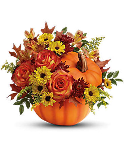 Celebrate the beauty of fall with this colorful, heartwarming mix of roses and alstroemeria, hand-delivered in our classic ceramic pumpkin.  Includes a lush mix of orange roses, orange alstroemeria, burgundy cushion chrysanthemums, yellow daisy chrysanthemums, solidago, huckleberry and oak leaves.  Delivered in Teleflora's exclusive ceramic pumpkin with lid.