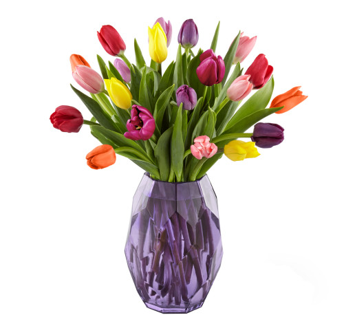 "Nothing says ""it's finally springtime"" quite like the sweet sight of tulips. A collection of assorted tulips in an array of bright hues fill a purple glass vase for gift that is bursting with freshness. Our Spring Morning Bouquet brightens up the day of its recipient with delightful charm and colorful blooms."
